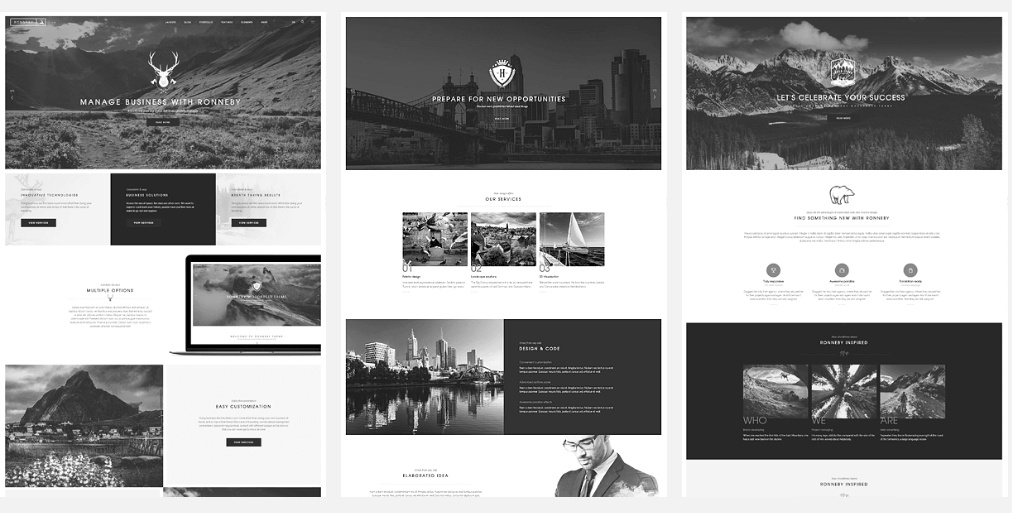 Šablony WordPress